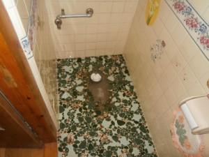 既存トイレ取り除き